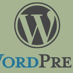WordPress สำหรับเจ้าหน้าที่ลงข้อมูล