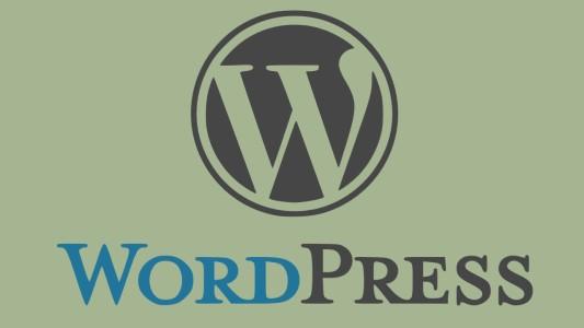 WordPress สำหรับทีมลงข้อมูล